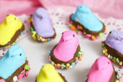 fun chocolate dipped peeps for spring